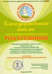 Токмаковский фестиваль (1)