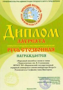 Токмаковский фестиваль (2)