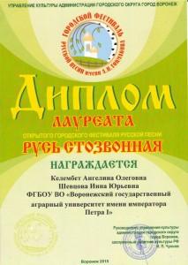 Токмаковский фестиваль (3)
