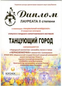 танцю город 2015 (2)